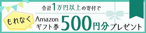 さとふるのメールマガジンに記載のキャンペーンコードを入力して「合計1万円以上の寄付でもれなく500円分のamazonギフト券プレゼント」